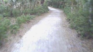Hammock Park Palm Trail S to Highland Trail