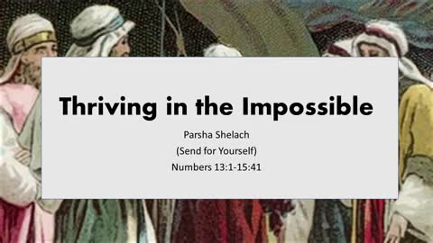 Thriving in the Impossible