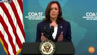 Kamala Points Finger at Climate When Cornered About Biden Border Crisis