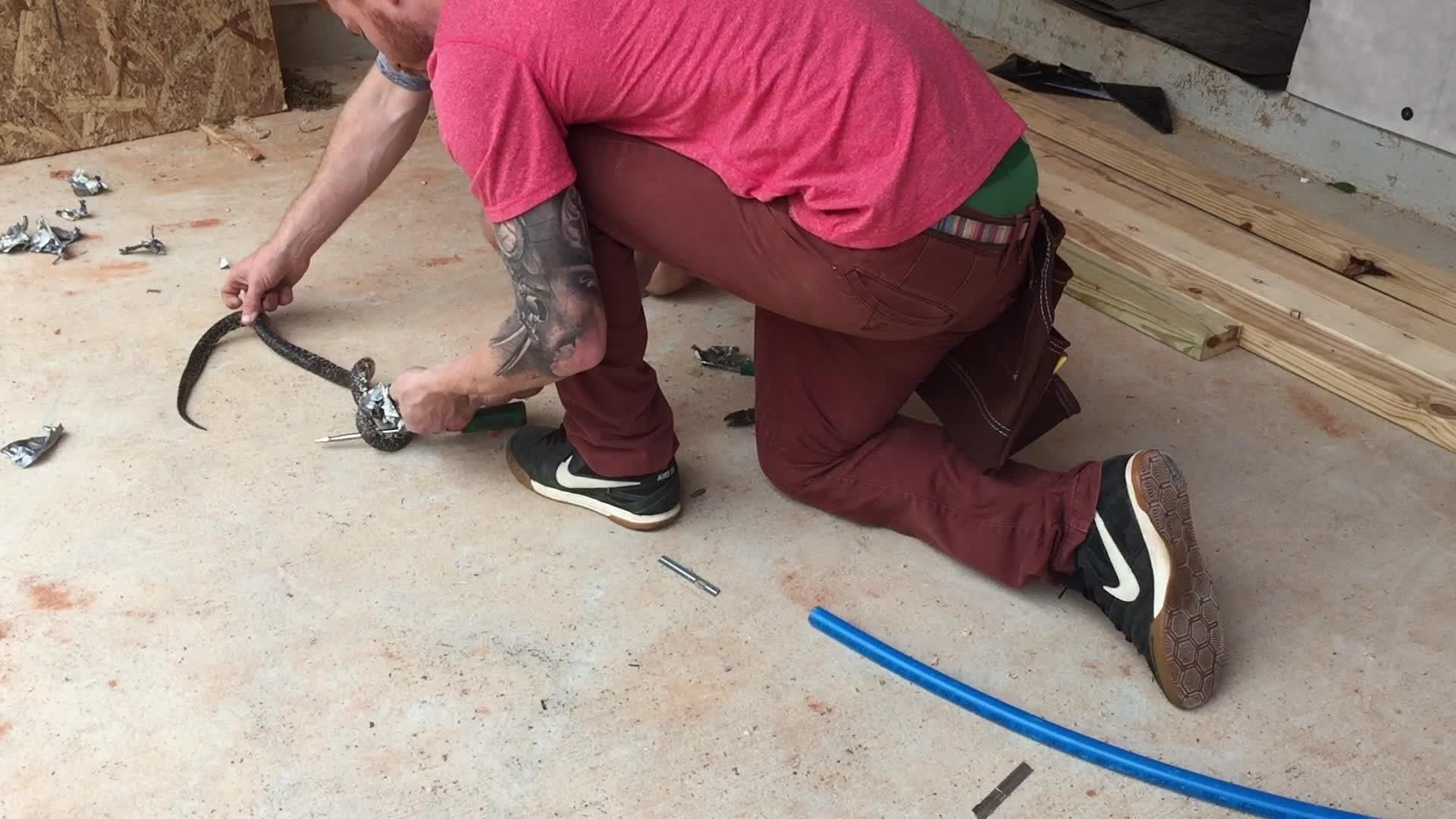 Dominic reddet slange fra tape-knipe