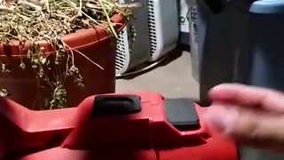 Removing attic blown insulation part 5