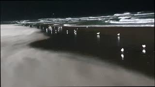 Strong Winds Blow Sand Along Beach Surface
