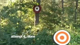 Target Practice Fail