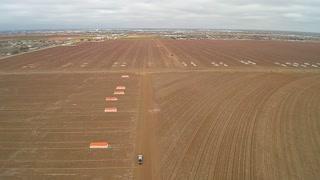 Winter cotton field 4