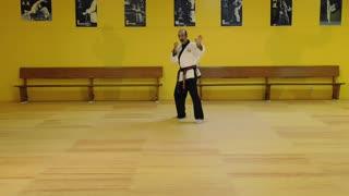 Little Samurang White Belt Green Tip