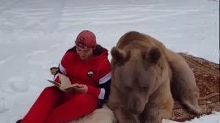 Bear Enjoys a Good Book