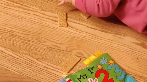 Baby Bobbing For Grahm Crackers...