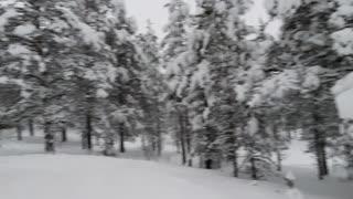 Finland - winter wonderland