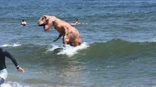 Dinosaur on blue surf board