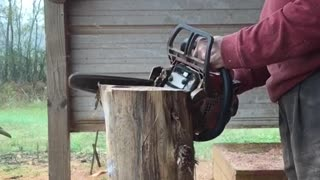 chainsaw carving a small bear