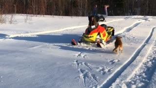 Snowmobile Scorpion Flip Fail