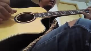 Johnny Tender's guitar cover of HS's Honestly.