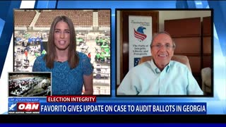 Favorito gives update on case to audit ballots in Ga.