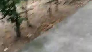 Videos grabaron los angustiosos momentos después de la explosión de un carro bomba en Cúcuta 2