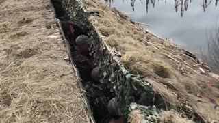 Military surprise and surprise