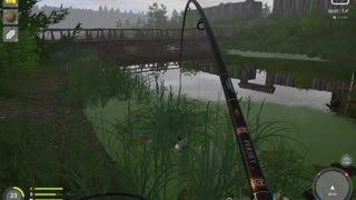 Russian Fishing 4 Old Burg Lake Grass Crap 5.448 Kg