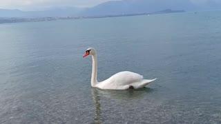 during the lockdown in Italy lake garda