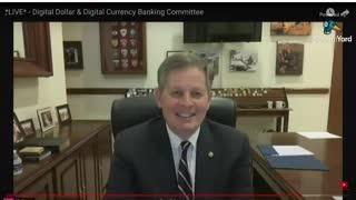 Fraud video