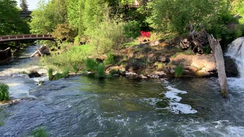 Tumwater Falls, on the Deschutes River in Olympia, Washington
