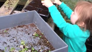 Toddler Trips while Tending to Plants