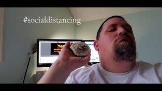 Social Distancing 1 #whatbugsme | Phoenix Pest Control TN