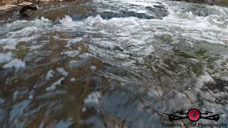 Underwater footage of schools of fish running the the rivers looking for Trout 4K