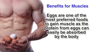 Egg Health Benefits _ Health Tips _ Healthy Living _ Eat Eggs Daily _ Protein Store