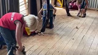 Kids Practicing Shearing