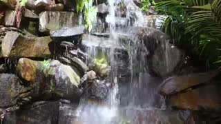 Waterfall with rocks and trees around it