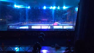 Robot Wars World Championships Colchester 2015: Thor Vs Nuts