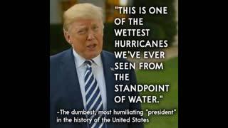 Best memes Trump Biden