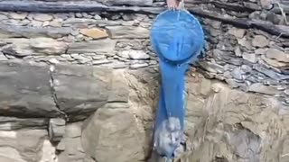 The dog that fell into the well was pulled out of the well