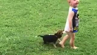 funny videos with animals and children