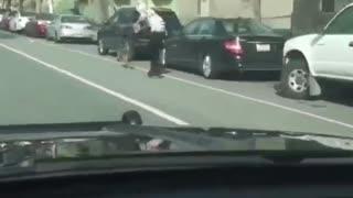 Dog Powered Skateboard Pulled Along Street
