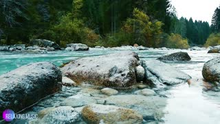 Nature Sound Flowing River