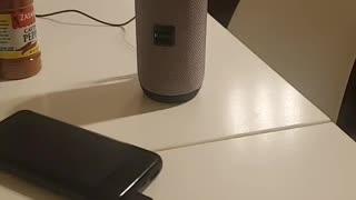 RADIATION FROM SMART WIFI BLUETOOTH SPEAKER