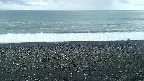 morning on the black sea
