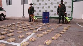 """Perros de la Policía detectaron una """"narcoencomienda"""" en Girón"""
