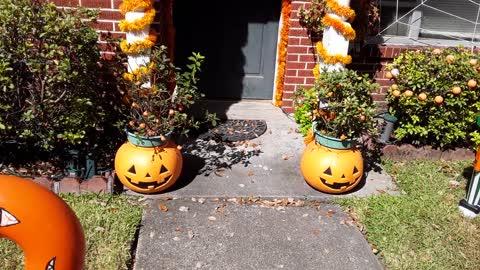 2019 Halloween Display Daytime