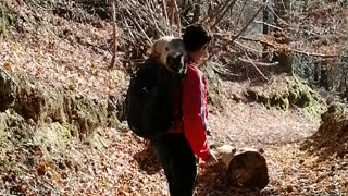Autumn Hiking with cat