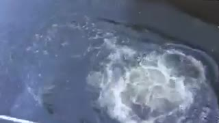 Guy in underwear jumping into water canal off of bridge balcony