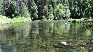Yosemite Serenity