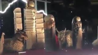 Pesebre Vaticano