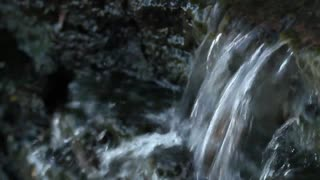 Stream (Free to Use HD Stock Video Footage)