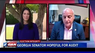 Ga. senator hopeful for audit
