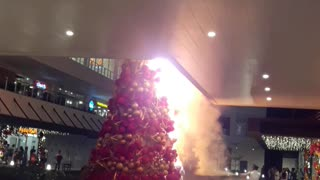 Christmas Tree Catches Fire