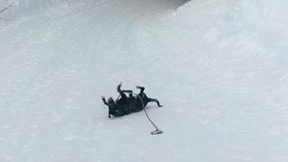 Doggo Loves to Slide on Snow