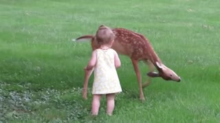 Little Girl Plays with Fawn!!!!