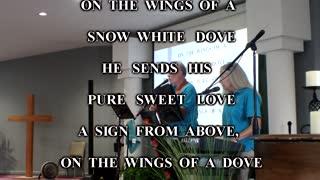 Rising Faith - Wings of a Dove