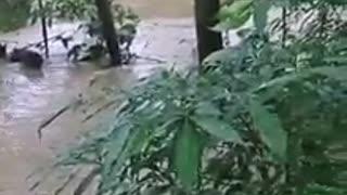 Completamente inundada amaneció la vía de Magará a Barranco Colorado